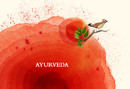 Pitch for an ayurvedic brand