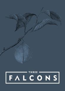 Three Falcons, London